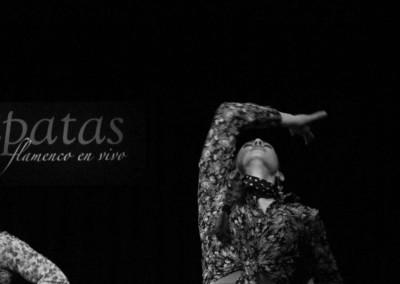 Flamenco010