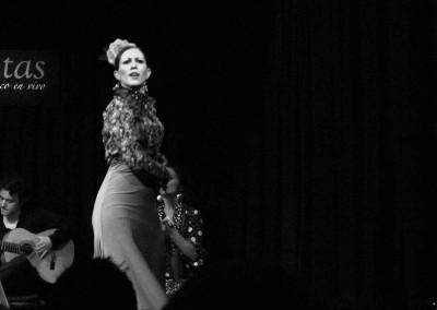 Flamenco012