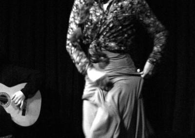 Flamenco013