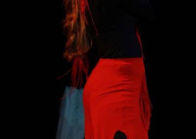 Flamenco014