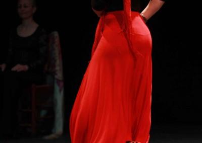 Flamenco016
