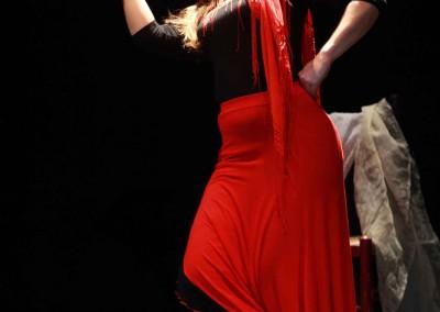 Flamenco017