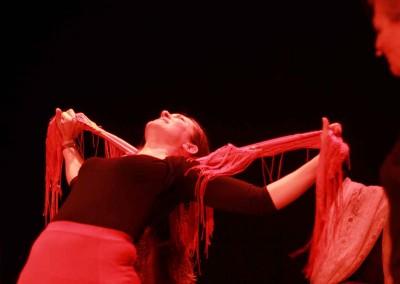 Flamenco020