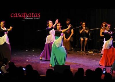 Flamenco024