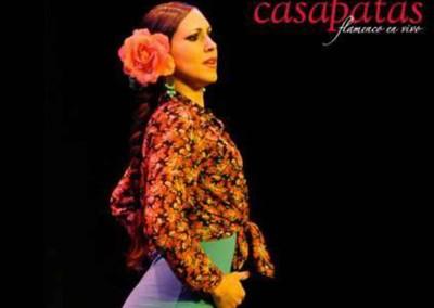 Flamenco025