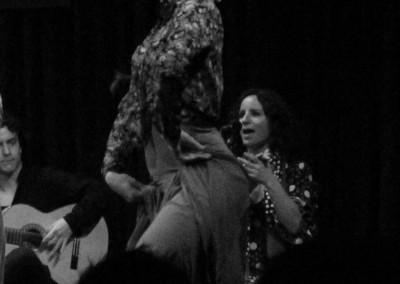 Flamenco028