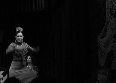 Flamenco029