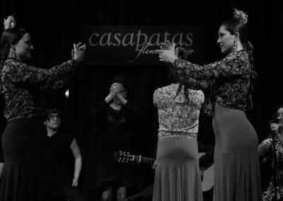 Flamenco030