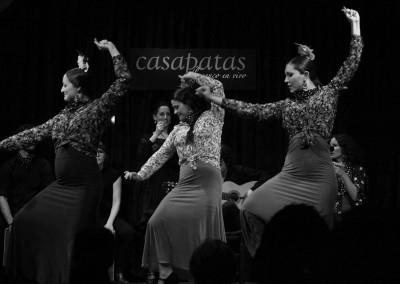 Flamenco031