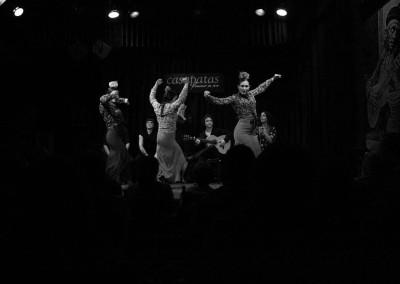 Flamenco032