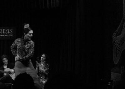 Flamenco05