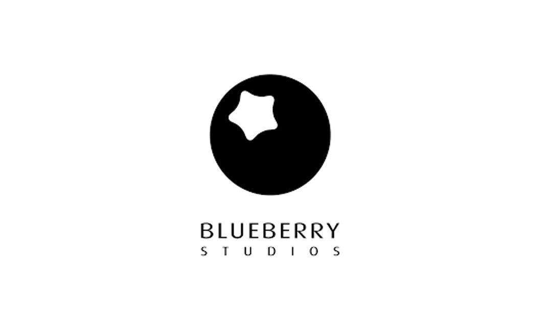 BLUEBERRY STUDIOS